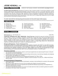 Payroll Accountant Resume Download Now Resume Examples For It