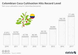 Chart Colombian Coca Cultivation Hits Record Level Statista