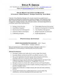 Social Media Manager Resume Resumes Examples Cv Template