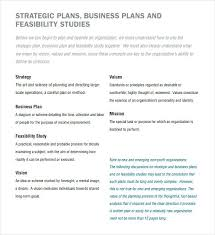 Sample Non Profit Strategic Plan Template Organization
