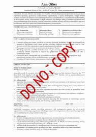 41 Resume Summary Statement Examples Customer Service