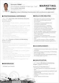 Marketing Manager Responsibilities Resume Megakravmaga Com