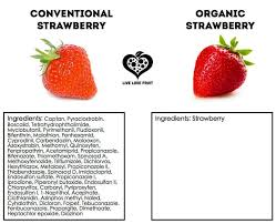 Organic Vs Conventional Foods Chart Chart Organic Vs Conventional Strawberries An Ingredient