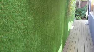 vertigrass modular synthetic grass system installed on exterior wall in sydney you