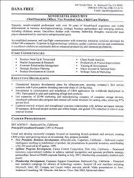 Executive Level Resume Template Commily Com