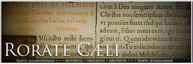 Image result for rorate caeli blog