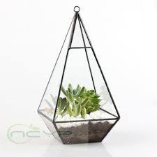 ... Large-size of Wondrous Triangle Pyramid Geometric Glass Terrarium Box  Succulent Fern Moss Planterhanging Plant ...