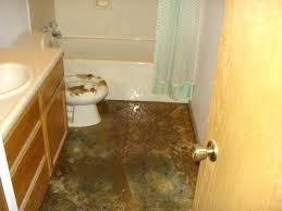 bathroom ceiling repair. How To Fix Water Damage In Bathroom Ceiling Idaho Falls Repair