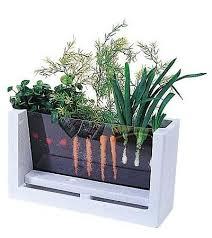 indoor gardening supplies. Fresh Ideas Indoor Vegetable Garden Kit Gardening Supplies Online Store