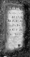 """Mary """"Polly"""" Quinn 1800–1848 – webtrees"""