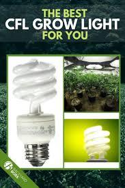 The Best Cfl Grow Lights Grow Lights Best Grow Lights