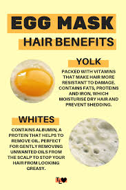 benefits of egg for your hair