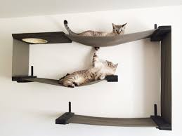 cat furniture you and your cat will love page 3 of 7 cat hammockdiy cat shelvesshelves on wall