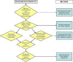 case study powerpoint template socialdecks powerpoint template     Presentation Process