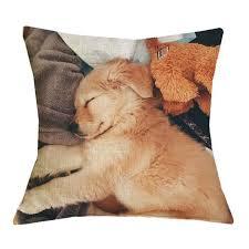 golden retriever puppy sleeping. Fine Sleeping Golden Retriever Puppy Sleeping Pillow Cases And S