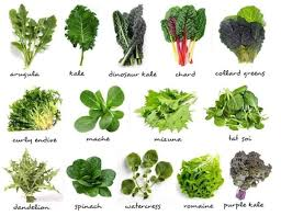 Top 15 Healthy Foods for your Body