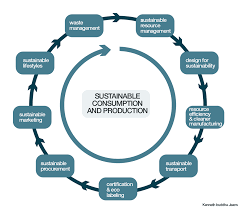 Design And Production For Sustainability Eco Fashion Encyclopedia Sustainable Consumption Diagram