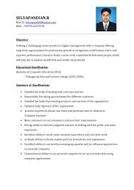 Executive Resume Sample Template Sale Executive Resume Sample Sales Account Example Cv Sales 27
