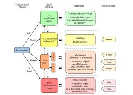 Polyvagal Theory Chart Dissociation Blog System Speak