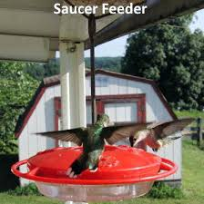 saucer hummingbird feeder will not leak red glass with perch