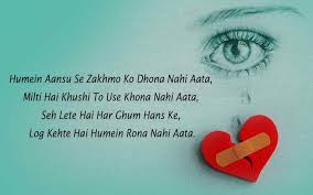 Best Sher Ever In Urdu And Hindi Shayari