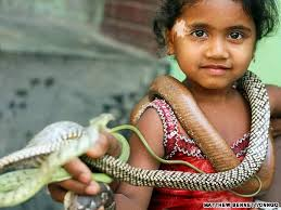Image result for snake charmers in bangladesh