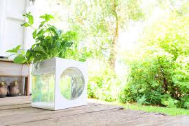 Kitchen Garden Kit Aquarium Garden Kit Self Cleaning Fish Tank Grows Plants