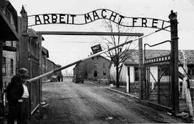 Image result for holocaust images