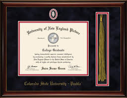 diploma 1 frame designs inc