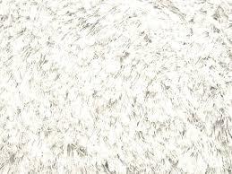 white shag carpet texture. Fabulous White Shag Rugs Carpet Texture Home Design Ideas Outside . E