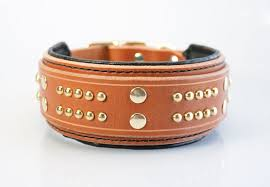 2in wide padded leather dog collar studded black dog collar image