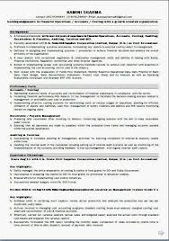 ... best resume fonts Beautiful Excellent Curriculum Vitae\/ CV Format -  resume with accents ...