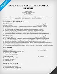 Insurance Executive Resume Sample Resumecompanion Com