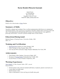 Additional Information On Resume College Student Resume Template Word 82