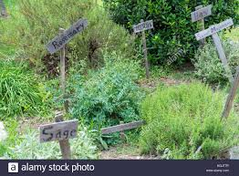 rustic country herb garden with wooden signs