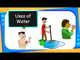 Science Importance Of Water For Children English
