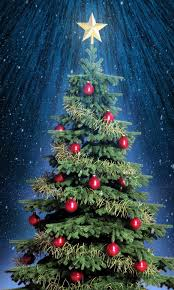 Classic-Christmas-Tree-With-Star-On-Top