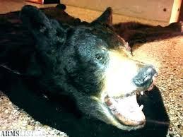 faux bear skin rug fur white breathtaking photo image of bearskin for living polar with head