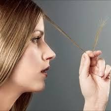 <b>Масло для кончиков</b> волос (сухих и секущихся): лучшие масла