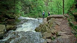Maybe you would like to learn more about one of these? Day Tripping Ricketts Glen How To Get To And Explore This Hiker S Paradise Bonus Waterfalls On Top Of Philly News