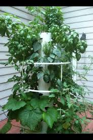 photo gallery for tower garden reviews