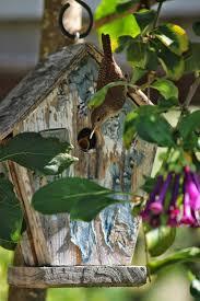 Rustic Birdhouses 1826 Best Bird Houses Images On Pinterest