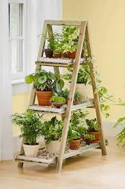 Stand indoor plant display