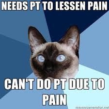 The Best PT Memes and Themes via Relatably.com