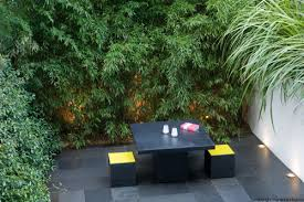 Small Picture city garden ideas the original north facing site was dark and