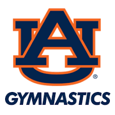 Image result for auburn university gymnastics