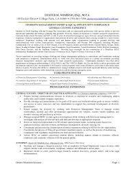 Equity Research Sample Resume Equity Research Resume Objective