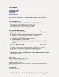 Army Resume Examples Sample Us Army Finance Form Awesome Us Army