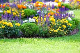 25 beautiful flower bed ideas trees com