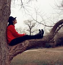 Image result for thinking in a tree